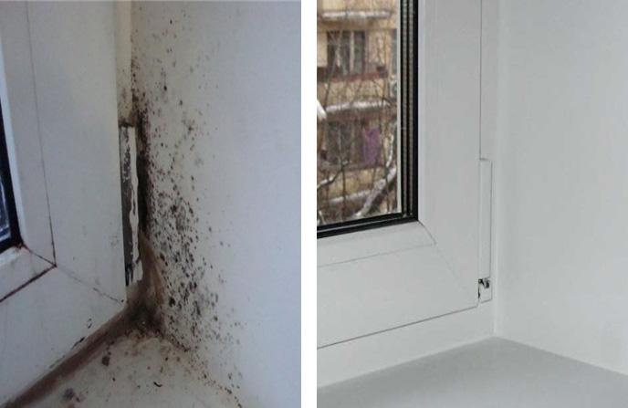 Удаления грибка с откоса, подоконника и рамы окна.